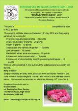 Buntingford in Bloom Competition